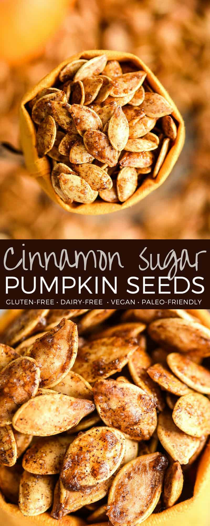 Homemade Cinnamon Sugar Pumpkin Seeds Recipe! Don't throw away the seeds when you carve pumpkins this year! Save them and make this recipe for the perfect sweet and salty fall snack! Vegan, gluten-free and dairy-free! and paleo-friendly! #pumpkin #pumpkinseeds #homemade #healthy #recipe #glutenfree #dairyfree #vegan #cinnamonsugar #paleo