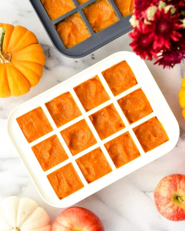 Overhead view of silicone trays filled with Homemade Apple & Pumpkin Baby Food puree