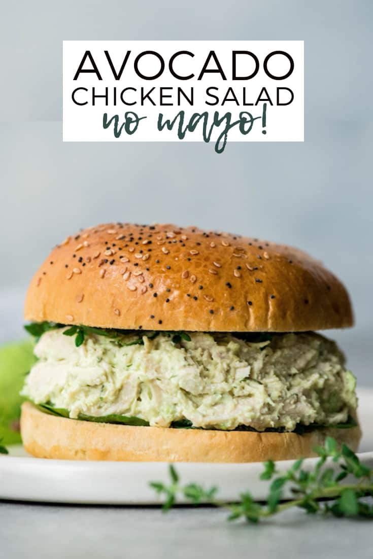 This Healthy Greek Yogurt Avocado Chicken Salad recipe has no mayo and is packed full of nutritious ingredients! It takes 5 minutes of active prep and is a great way to use leftover chicken! #recipe #healthy #glutenfree #chickensalad #avocado #lunch #healthyrecipe