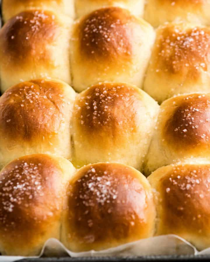 front view of a pan of Best Homemade Dinner Rolls after being baked