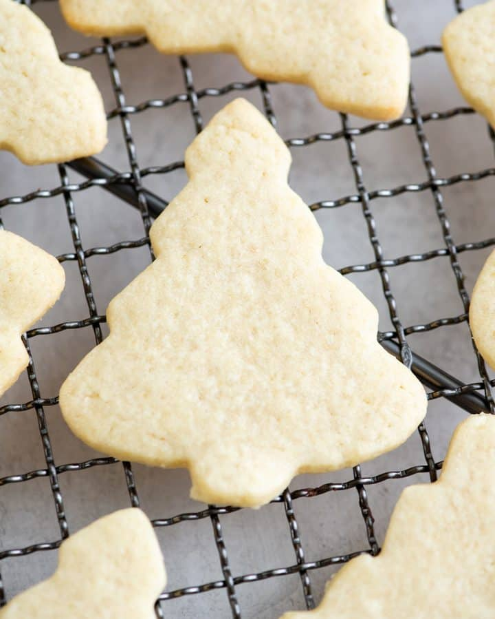 up close overhead view of a cut-out sugar cookie shaped like a Christmas tree on a cooling rack