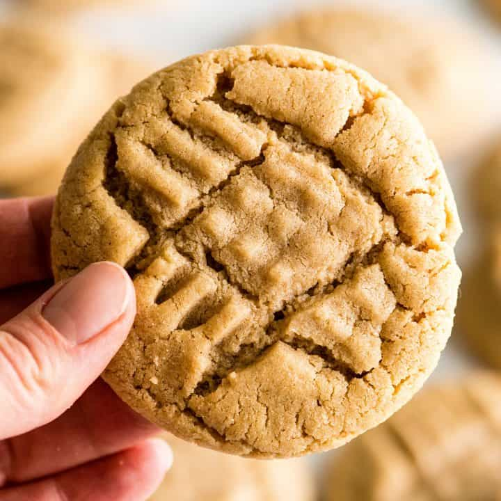 front view of a hand holding a peanut butter cookie