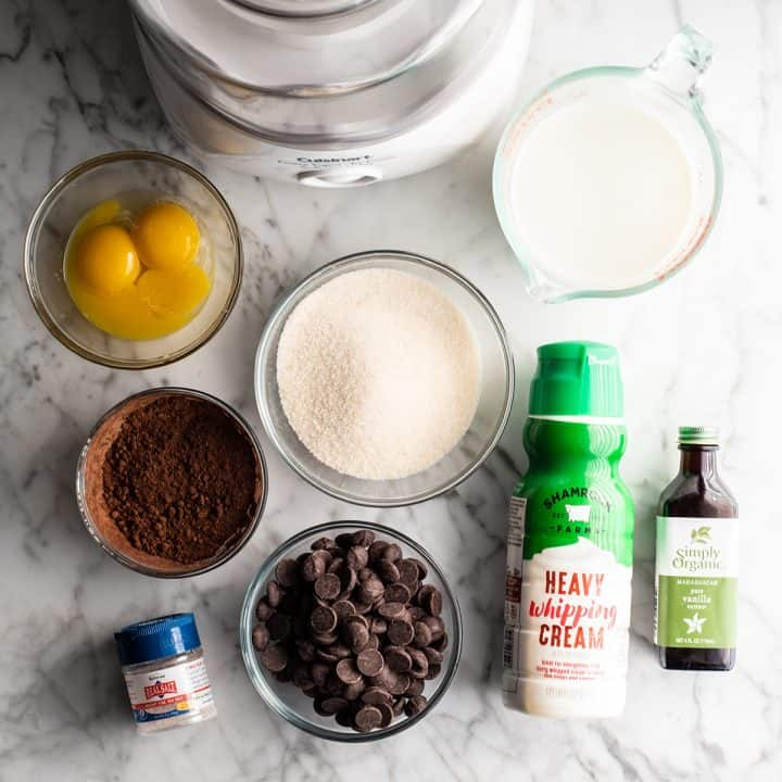 Overhead view of the ingredients in this chocolate ice cream recipe