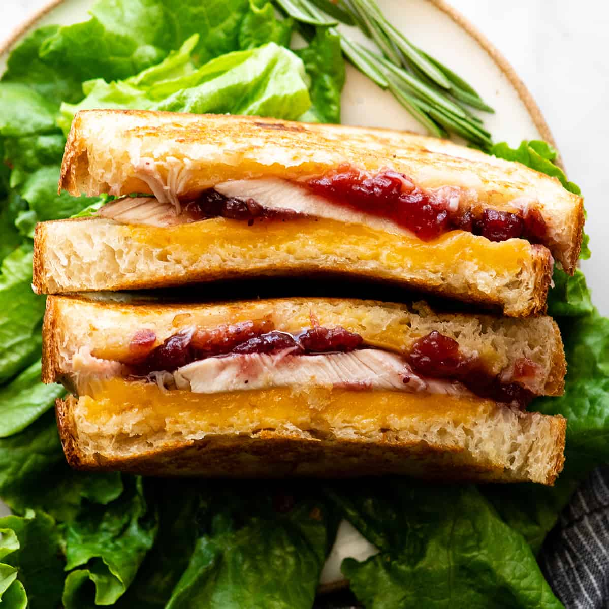 overhead photo fo a Turkey Cranberry Sandwich cut in half