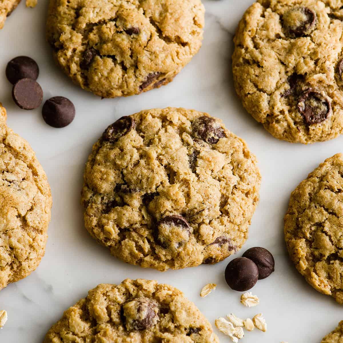 overhead photo of 6 lactation cookies