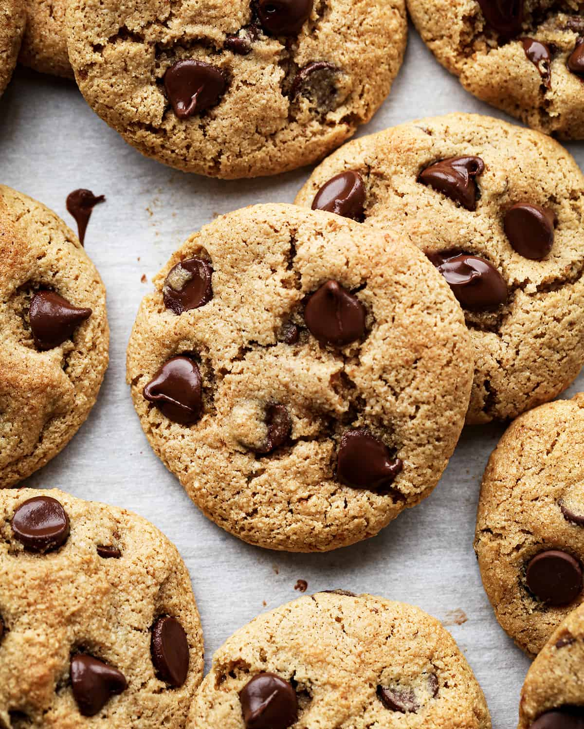 overhead view of 8 Paleo Chocolate Chip Cookies on a baking sheet